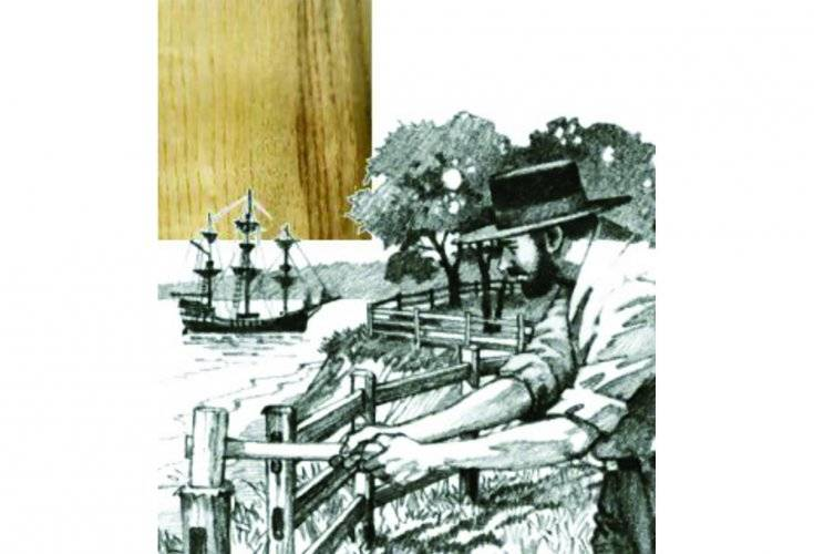 black locust lumber for sale us